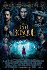 EN EL BOSQUE - Into the Woods