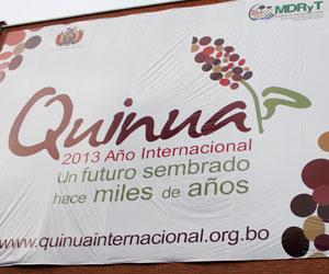 En 2013 se promoverá el consumo interno y exportación de quinua