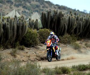 El piloto francés Ciryl Despres en acción hoy, sábado 19 de enero de 2013, durante la última etapa del rally Dakar, que se corre entre La Serena (Chile) y Santiago (Chile)