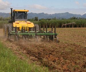 Bolivia invertirá 57 millones de dólares en riego de cultivos