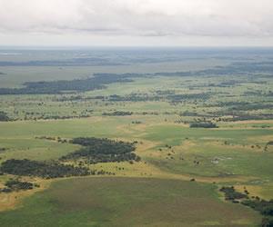La WWF reconoce a Bolivia como el primer país con humedales