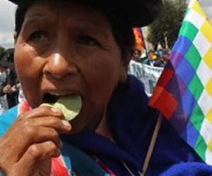 Cocaleros de los Yungas marchan hacia la embajada de EEUU para reivindicar la coca
