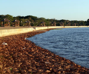 Inauguran el balneario natural 'La Curicha' en San Matías, Santa Cruz
