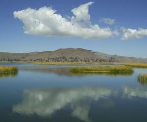 Proyecto de conservación Lago Titicaca