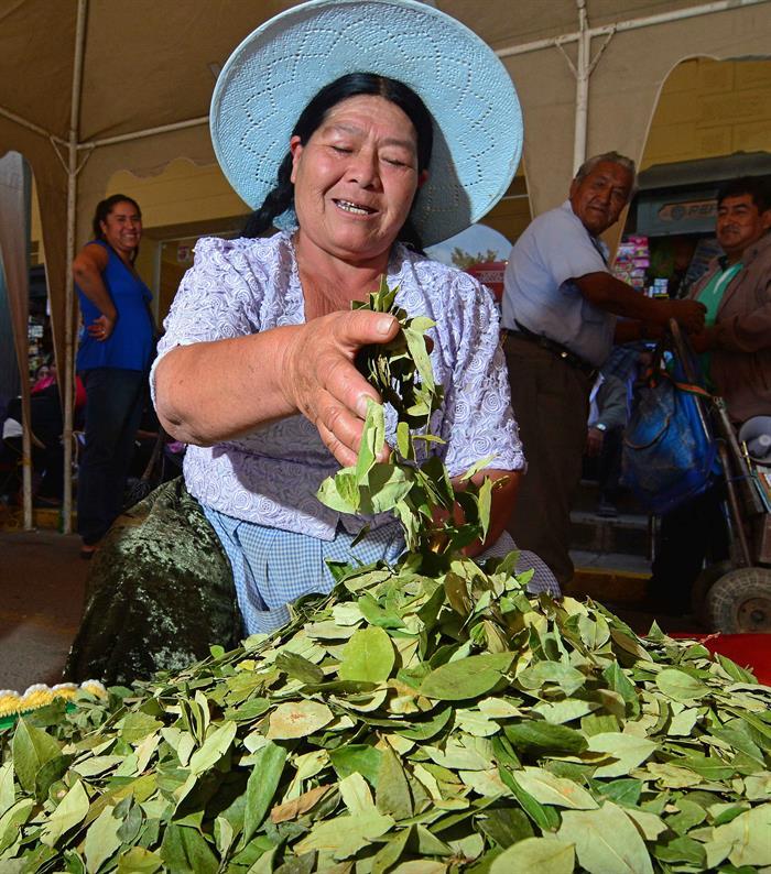 El país celebra el Día del Acullico