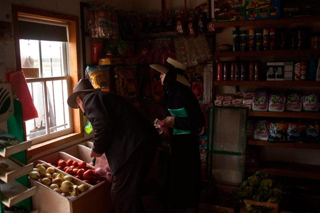 Aislados de la tecnología, menonitas mantienen su forma de vida en Bolivia