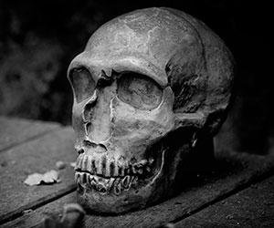 Hallazgo de restos óseos indígenas en Potosí