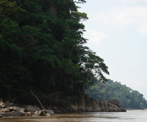 Tras nueve días, logran apagar incendio en la reserva natural Madidi
