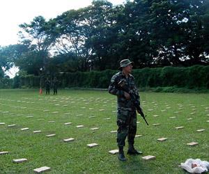Fuerzas del orden secuestraron 85 toneladas de droga en el primer trimestre