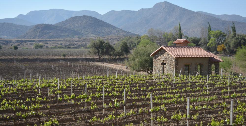 Operadores europeos de turismo interesados en Ruta del Vino
