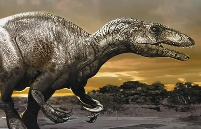 Argentina: Hallan huevos de dinosaurio con embriones dentro