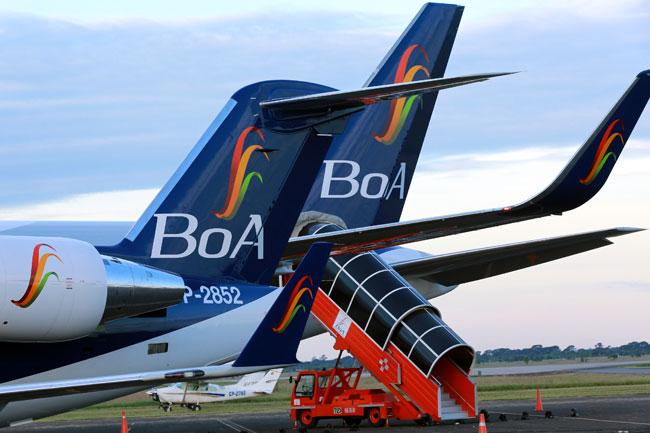 Los nuevos aviones de BOA irán llegando durante el presente año. Foto: ABI