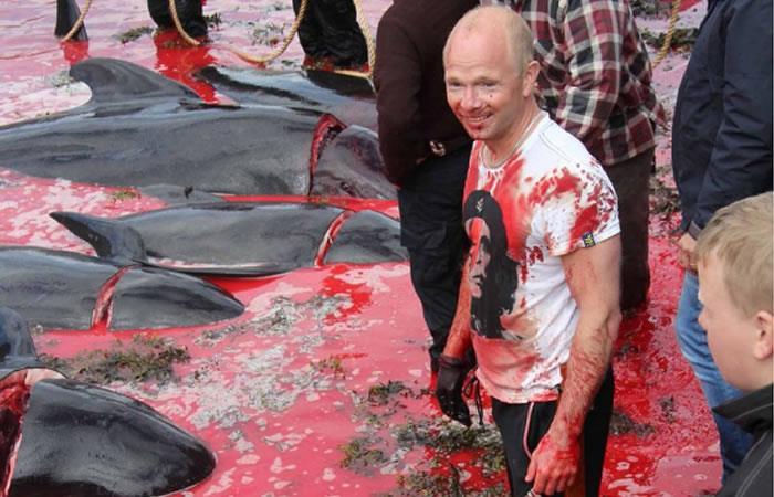 Atlántico: Así es la tradicional masacre de ballenas en las Islas Feroe
