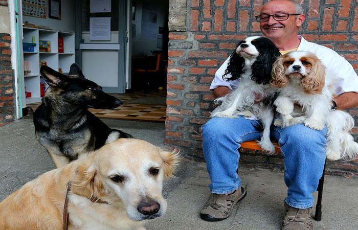 Perros son utilizados para tratar las enfermedades mentales
