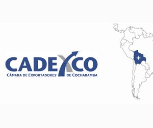 Cochabamba reporta 11,15% de reducción en exportaciones hasta mayo