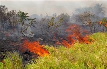 Cuatro incendios forestales afectan al departamento de Santa Cruz