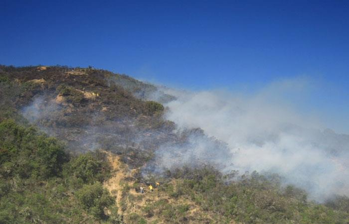 Incendios arrasan más de 2 mil hectáreas de vegetación en Cochabamba