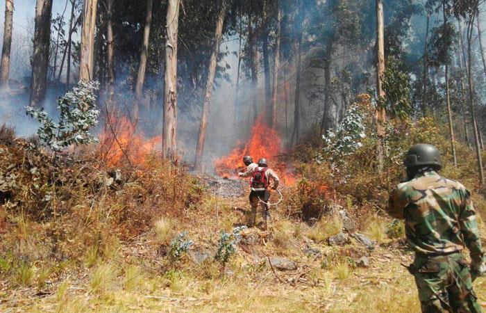 Controlan incendio forestal en el Parque Tunari