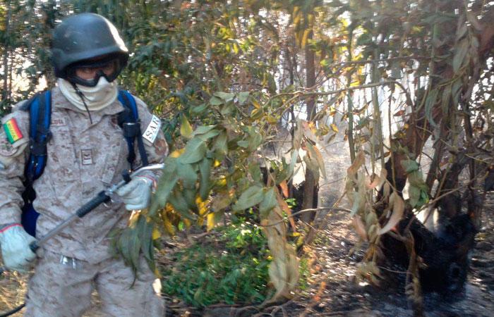 Guardabosques, miembros del SARS y militares lucharon contra las llamas en el Parque Tunari. ABI