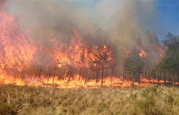 Tarija: Declara 'zona de desastre' en la serranía de Sama