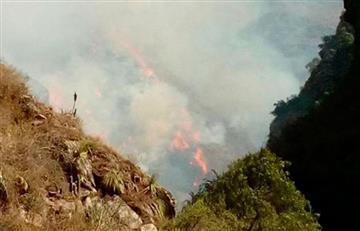 Gobierno apoyará a productores afectados por incendio en Tarija