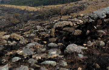 Plan de reforestación en serranía de Sama comenzará en 2018