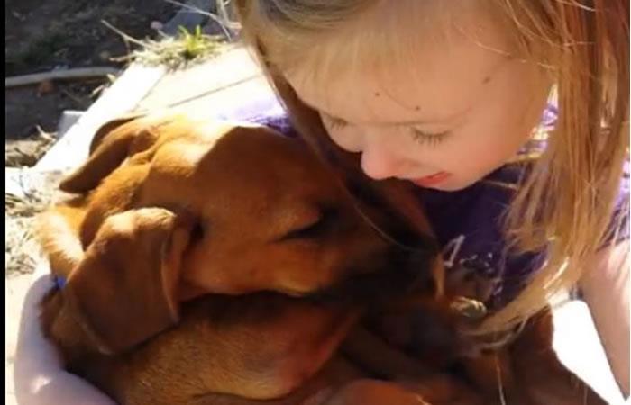 Facebook: Niña le canta a su perro adoptado y enternece las redes