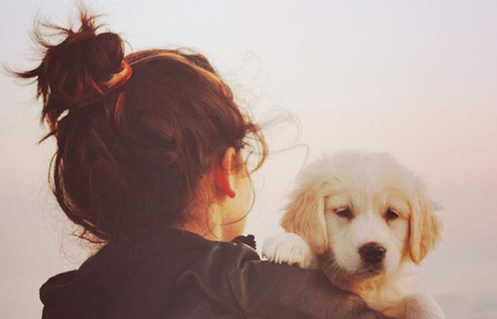 ¿Qué raza de perro deberías tener en tu casa?