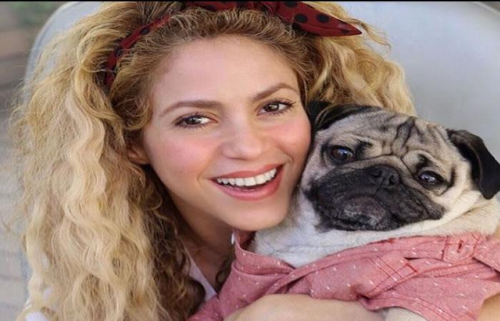 Shakira en manos del cirujano Steven M. Zeitels