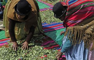 Bolivia: Así se celebra el Día Nacional del Acullicu