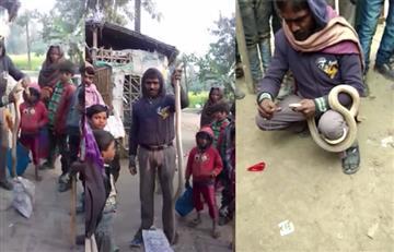 Video: Cobra muerde mortalmente a un hombre que intentaba coserle la boca