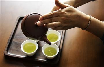 ¿Quieres bajar de peso? El té de cilantro puede ayudarte