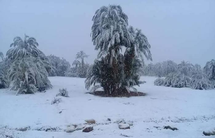 Desierto de Marruecos: Se presenta una inusual nevada