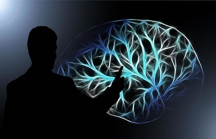 Así se forman los pensamientos en el cerebro
