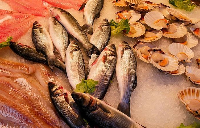 Semana Santa: Así puede reconocer un pescado en buen estado