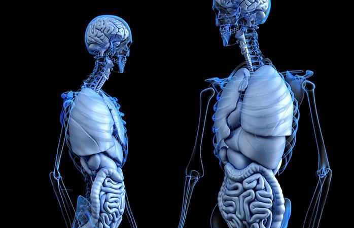 Científicos descubren el uso de fungicida para evitar cáncer de hígado