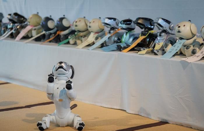Japón: Realizan llamativo ritual para despedir perros robot