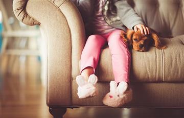 ¿Cómo encontrar la casa perfecta para mudarte con tu mascota?