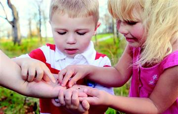 7 tips para cuidar el medio ambiente en familia