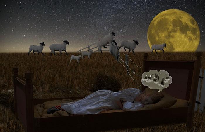 Foto: Pixabay. Definitivamente contar ovejas para conciliar el sueño no funciona