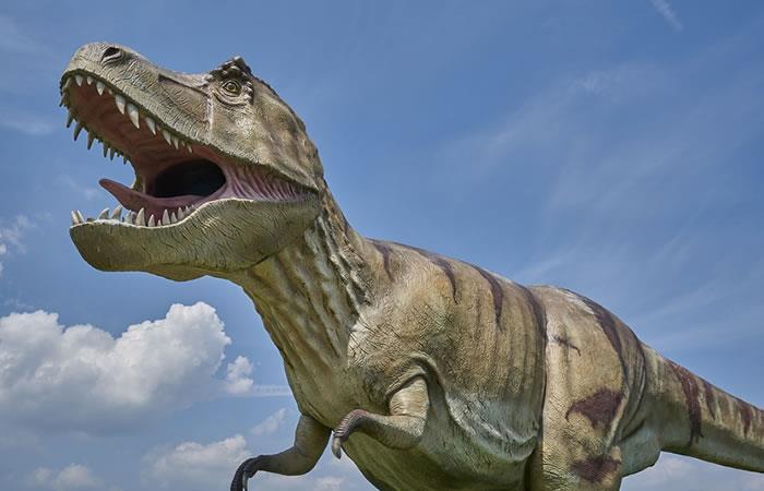 ¿El Tyrannosaurus Rex no podría sacar la lengua?