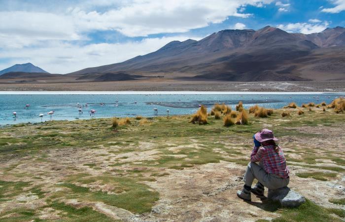 Bolivia se destaca en turismo mundial. Foto: ShutterStock