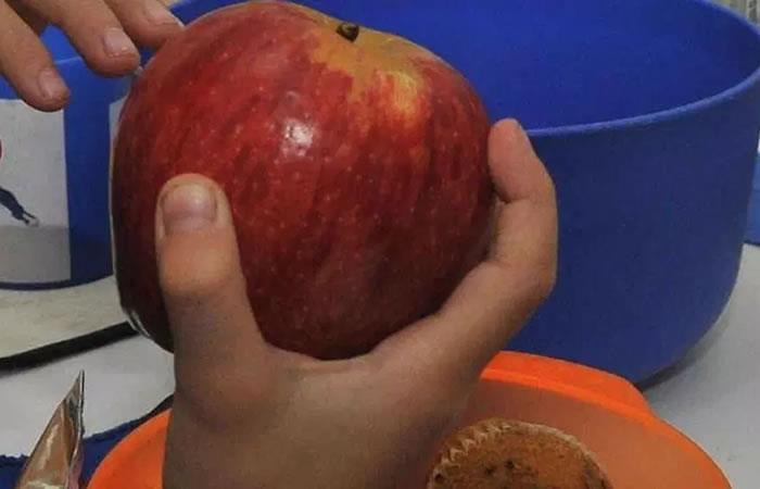 Gobierno lanza campaña saludable en colegios. Foto: Pixabay