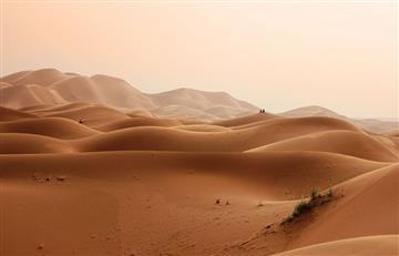 Parques eólicos y solares podrían aumentar lluvias en el Sahara, dice estudio