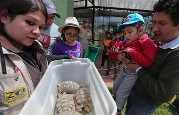 Zoológico de La Paz busca ser pionero en conservar especies tras cumplir 25 años