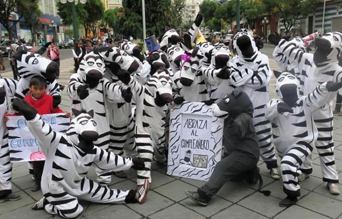 Cebras La Paz Bolivia. Foto: EFE