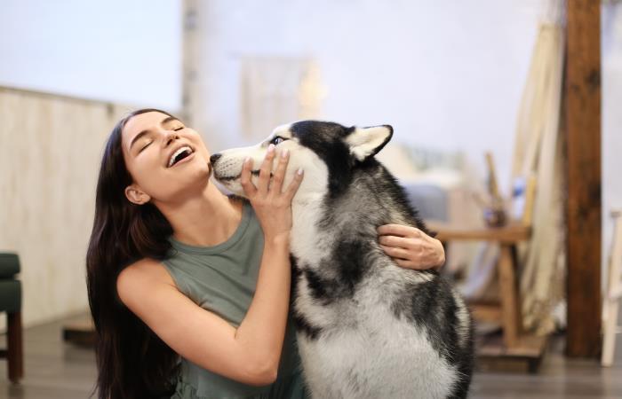 ¿Ahora es el perro el mejor amigo de la mujer?. Fuente: Shutter Stock