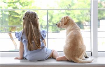 Consejos para que tu mascota se adapte al nuevo hogar