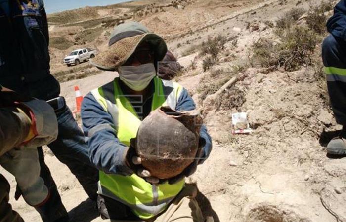 Los restos fueron hallados en la zonas de Mazo Cruz y Chacoma. /Ministerio Culturas Bolivia. Foto: EFE