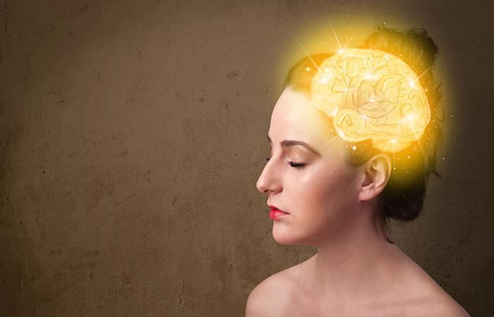 Lista de alimentos perjudiciales para el cerebro. Foto: Shutterstock